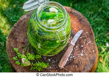 Preparation for pickled cucumber in summer