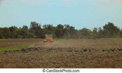 Preparation of fields for sowing