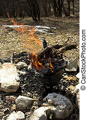 prepare to barbecue. stack of firewood in fire