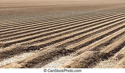 Prepared Farm Field Soil