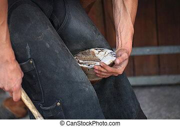preparing a horse hoof