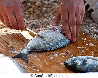 Preparing sea food