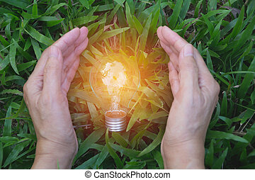 presa a terra, successo, suolo, energia, mano, persona, idea, solare, lampadina, concept.