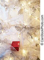 Present on Christmas Tree