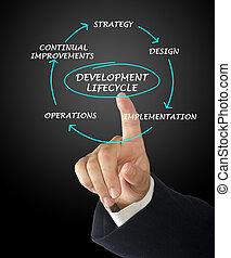 presentación, de, desarrollo, lifecycle
