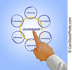 Presentation of leadership
