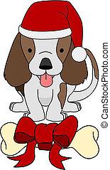 presente, osso, ilustração, cão