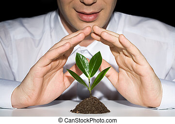 Preserve a plant - Photo of businessman?s hands preserve a...