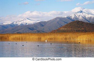 prespa, lago, 3