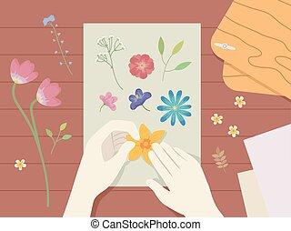 presse, blomst, illustration, hænder