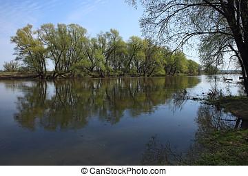 presto, piccolo, fiume, russia, primavera