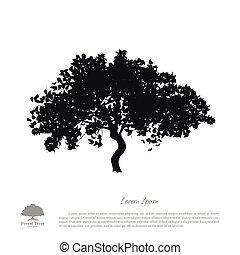 pretas, árvore, silueta, ligado, um, branca, experiência., quadro, de, maçã