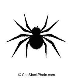 pretas, aranha, ilustração