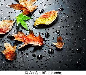 pretas, folhas, outono, sobre