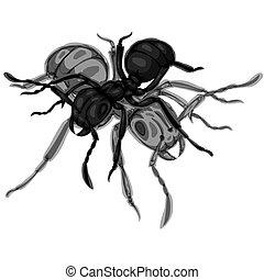 pretas, formigas