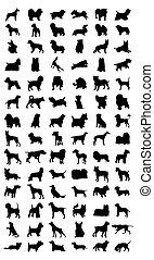 pretas, silhuetas, de, diferente, raças, de, dog., um, vetorial, ilustração