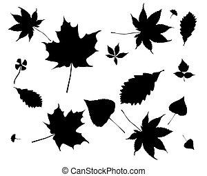 pretas, silhuetas, de, folhas