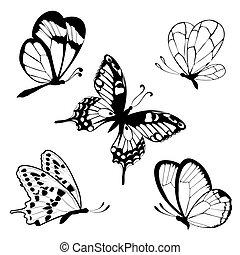 pretas, t, borboletas, jogo, branca