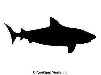 pretas, tubarão, vetorial, silhouette-, ilustração
