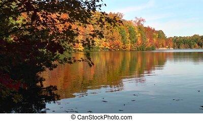 pretty autumn lake