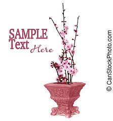 Pretty Cherry Blossoms in a Vase