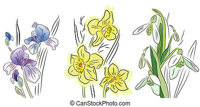Pretty collection of flowers - iris, daffodil and snowdrop