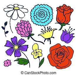 Pretty Color Flowers Aggregate Vector Illustration