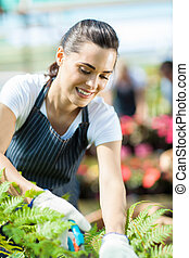 gardener working inside greenhouse