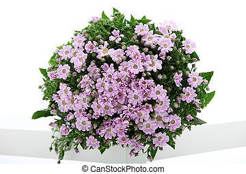Pretty fresh floral bouquet