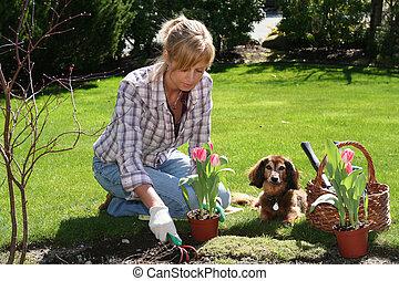 Pretty gardener - Pretty blond lady enjoying her garden at ...
