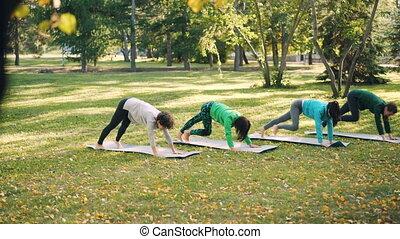 Pretty girls sportswomen are practising yoga outdoors in...
