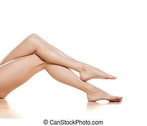 pretty legs - pretty female legs on white background