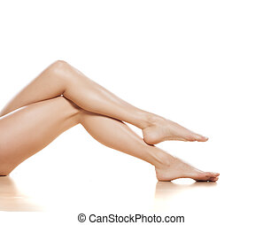 pretty legs - pretty female legs on white background