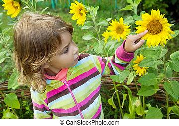 pretty Little Girl looks at sunflower in garden