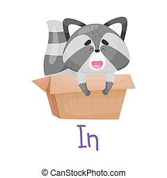 Pretty Little Raccoon Inside Box With Handwritten Inscription In Vector Illustration Cartoon Character