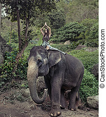 Pretty model riding on the elephant