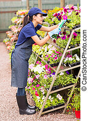 nursery worker trimming flowers