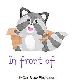 Pretty Raccoon Sitting With Box With Handwritten Inscription Preposition In Front Of Vector Illustration Cartoon Character