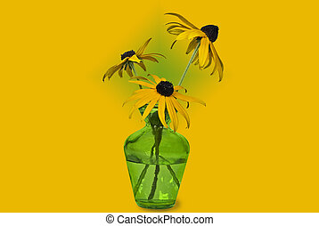 Pretty Susan - Black-eyed susan blossoms in a green vase.