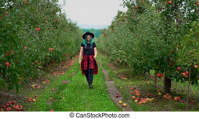 Pretty unusual woman with blue dyed hair walking alone between trees in apple garden at autumn season. Girl goes to camera. Organic, nature concept. High quality FullHD footage