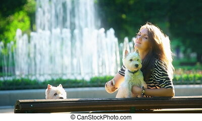pretty woman with two white terrier dogs doing selfie on bench in park. Static