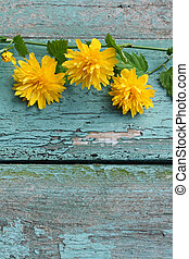 Pretty wooden background with yellow flowers