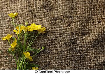 Pretty yellow flowers on burlap