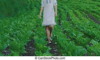 Pretty young girl walks and turns around in the sugar beet field. Slowly