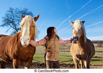 Pretty young girl with horses - Pretty young girl leading...