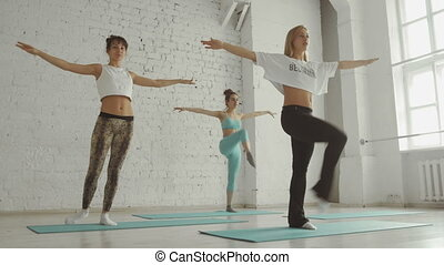 Young Girls Doing Yoga, Group of People In a Stretching Class, Healthy Lifestyle
