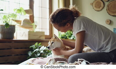 Pretty young mixed race lady is patting lovable shiba inu dog sitting on bed in bedroom with large windows and modern interior. People, houses and animals concept.