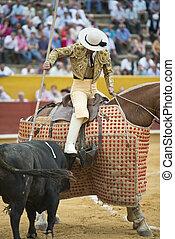Pricking the bull.