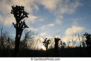 Prickly Pear Cactus Silhouette