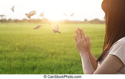 prier, respect, femme, fond, nature